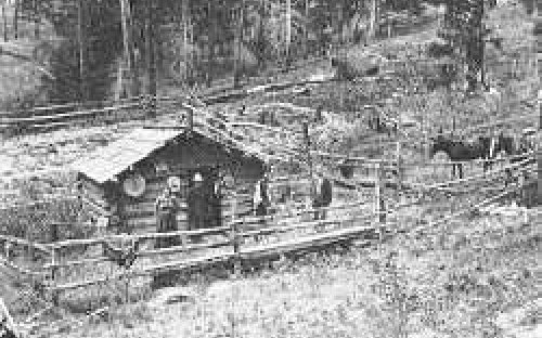photo of early homestead