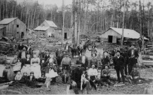 A lumber camp
