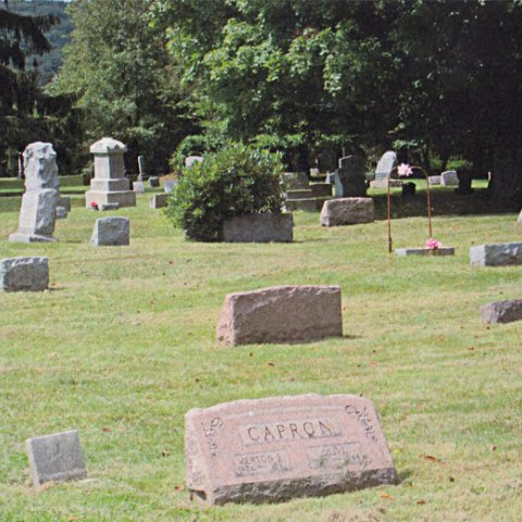 Willoughby Cemetery in Great Valley 1