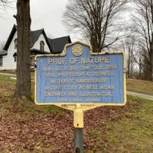 NYS Historical Marker for Anna Botsford Comstock